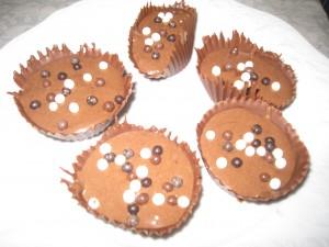 MOUSSE CHOCOLAT ET SON SUPPORT EN CHOCOLAT (MICHALAK) dans dessert img_9851-300x225